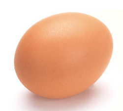 http://isashi.co.jp/images/egg.jpg